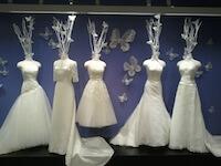 bridal market recap