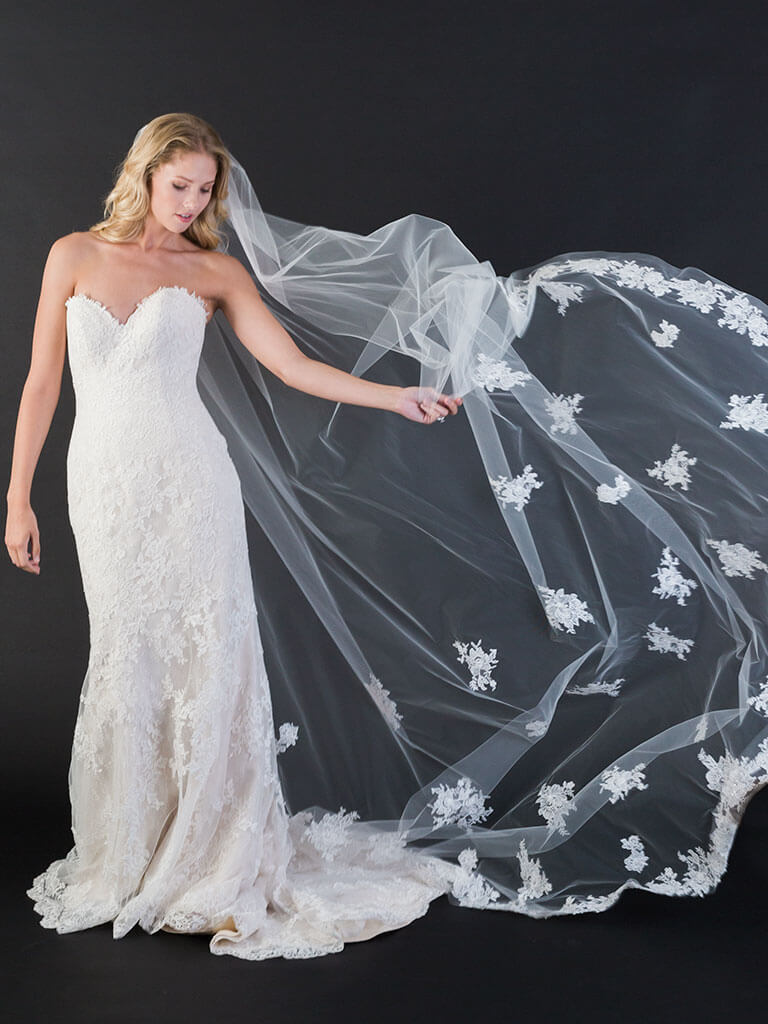 Long veil with dotted lace appliques