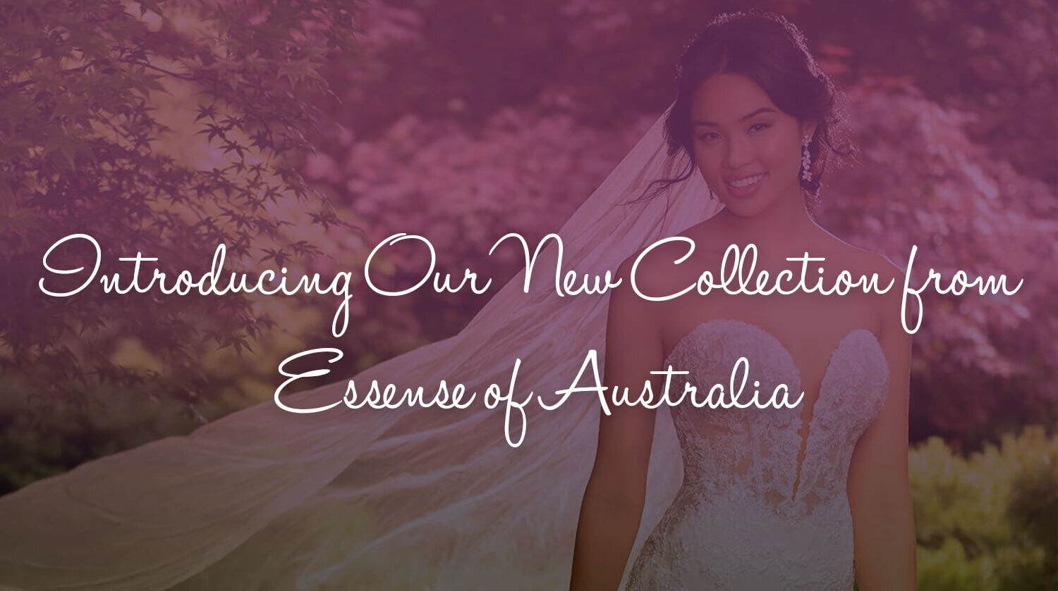 Introducing Our New Collection from Essense of Australia